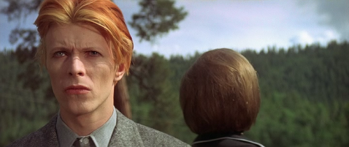 The Man Who Fell To Earth / Dünyaya Düşen Adam